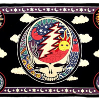 GRATEFUL DEAD SPACE YOUR FACE TWIN TAPESTRY - BEDSPREAD