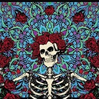 "Grateful Dead Skeleton & Roses Tapestry (60"" x 90"") #97"
