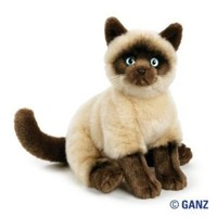 Webkinz Signature Siamese Cat