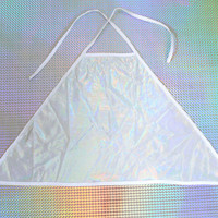 Silver Holographic Rainbow Iridescent Cropped Halter Top Cyber Pastel Grunge Kawaii