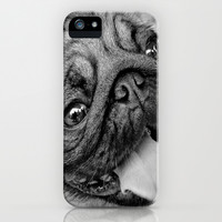 Pug Dog iPhone & iPod Case by Celso Azevedo