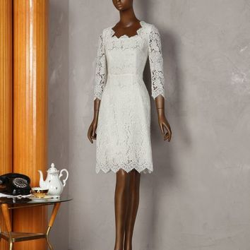 Lace scallop neck dress | dolce&gabbana online store