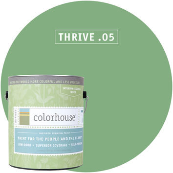 Paint by Colorhouse THRIVE .05