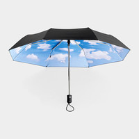 Sky Collapsible Umbrella by Tibor Kalman & EFM