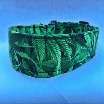Marijuana Dog Collar - Pot Leaf -  Weed Leaf Dog Collar - Boy Dog Collar - Sweet Leaf