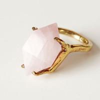 Of a Kind - ROSE FURIES RING