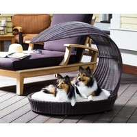 The Refined Canine Outdoor Dog Chaise Lounger in Espresso