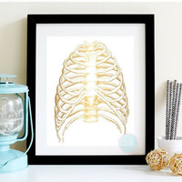 PRINTABLE ART Rib Cage Print Medical Printable  Human Anatomy Medical Illustration Skeleton Illustration Anatomy Rib Cage Human Anatomy Art