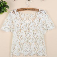 Pure Color Cropped Lace Top