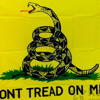 Dont Tread on Me  Gadsden Flag 3*5 feet (yellow)