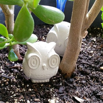 white owl, tiny garden statue, Baby owl concrete figurine  natural home decor, unique trending gift