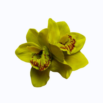 Rockabilly Pin up Girl Double Orchid Tropical Lime Green Hair Flower Clip