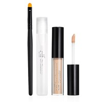 Zit Zapper & Concealer Set
