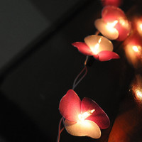 20 flower handmade in pink sahde color string light patio decorate wedding bedroom living room party lantern deco