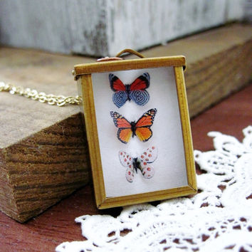 Monarch Butterfly Necklace Natural History Framed by DoodleBirdie