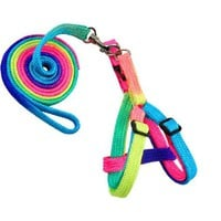 Adjustable Pet Leash + Pet Harnesses Rainbow color Pet Dog Leash Small Puppy Cat Rabbit Kitten Nylon Leash Harness Collar Lead