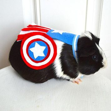 Captain America Costume Guinea Pig / Chinchilla. The Avengers. Pet Halloween Costumes By Marmota Caf¨¦.