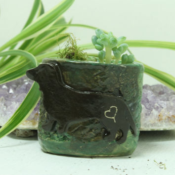 Dachshund Mini planter for Air Plant and moss Miniature planter