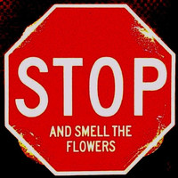 Stop Sign Stop and Smell The Flowers for Bedroom Office Dorm Room New in package