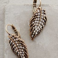 Lush Leaf Drops by Anthropologie Gold One Size Earrings