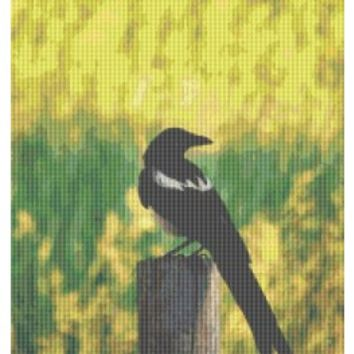 Magpie, Bird, Counted Cross Stitch Pattern, Xstitch - X-Stitch-Patterns Counted Cross Stitch