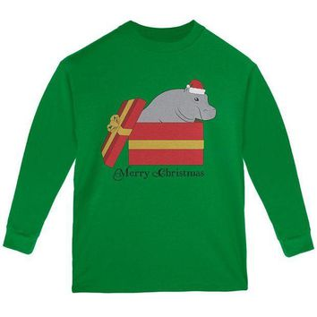 CREYCY8 Merry Christmas Hippo Hippopotamus Cute Youth Long Sleeve T Shirt