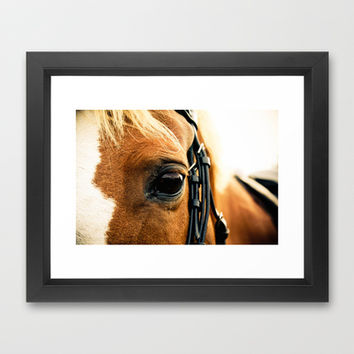 a horse's kind eyes. Framed Art Print by lissalaine