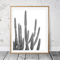 Desert Cactus Print, Black and White, Succulent Print, Botanical Print, Cactus Art, Coastal Wall Art, Large Poster, Cactus Photography, 122b