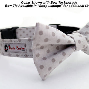 Light and Dark Grey Polka Dot Dog Collar with by theKozieCanine