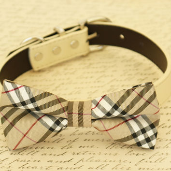 Plaid Burly wood Dog Bow Tie attached to collar, Wedding, Ivory, Pet accessory
