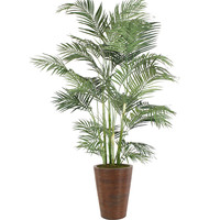 7' Areca Palm in Chocolate Pencil Rattan Planter