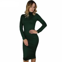 Sexy Turtle neck Long Sleeve Dress