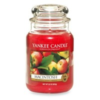 Yankee Candle® Housewarmer® Macintosh Large Classic Candle Jar