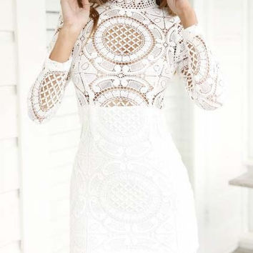Lace Funnel Collar Long Sleeve Bodycon Mini Dress
