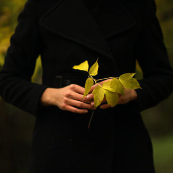 Portrait of a Girl Holding Autumn Leaves