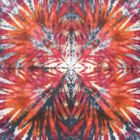 trippy tie dye tapestry red and black