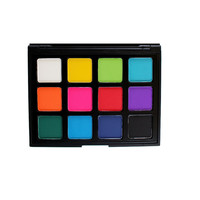 12P - PICASSO PALETTE - PICK ME UP COLLECTION *NEW*
