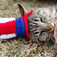 Uncle Sam Cat Hat Costume - July 4th Pets - Uncle Sam's Kitty Top Hat
