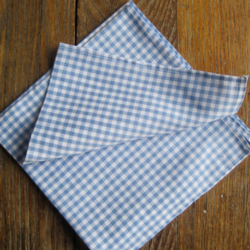 Gingham Cloth NAPKINS Set of 4 - Picnic Napkins in Classic Blue Squares - Summer Housewares (Ready to Ship)