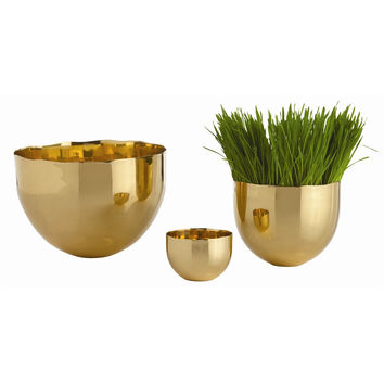 Polished Brass Trio