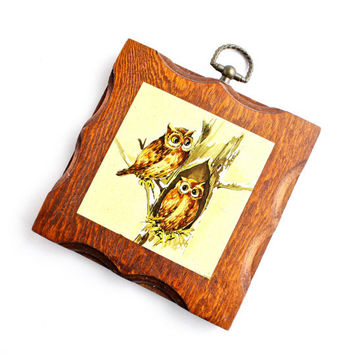 Vintage Owl Wall Hanging - Rustic 1960s Home Decor Wood Ornament  / Perching Birds