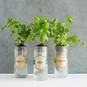 Kitchen Essentials Herb Planter | Indoor Herb Planter, Grow Herbs Indoors
