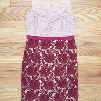 Hearts & Lace Party Dress