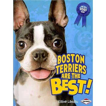 Boston Terriers Are the Best! (The Best Dogs Ever)