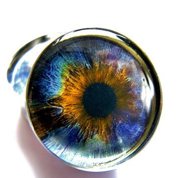 Human Eye Ball Blue/Yellow burst Plugs- 1 Pair (2 plugs) - 12g, 10g, 8g, 6g, 4g, 2g, 0g, 00g, 7/16, 1/2, 9/16, 5/8, 3/4, 7/8, 1 inch to 2 in