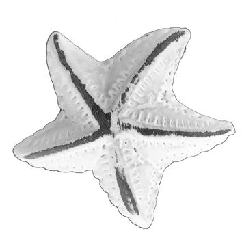 Vintage Seascape White Starfish Drawer Cabinet Cupboard Pull Knob