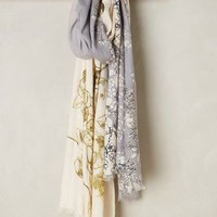 Garden Study Scarf by Anthropologie in Lilac Size: One Size Scarves