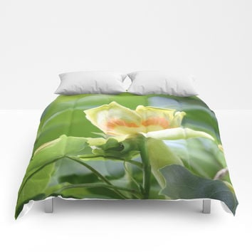 Tulip Tree - Liriodendron Comforters by Theresa Campbell D'August Art
