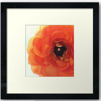 Flower Photography, Ranunculus Print, Orange, Coral, Ranunculus Flower Print, Wall Art, Flower Photo, Floral Wall Decor