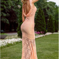 Sexy backless lace tight dress AA1119F